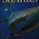 sharkbook1