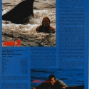 jaws2article