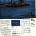 AMERICINEMAaug19873