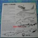 JawsOfShark752